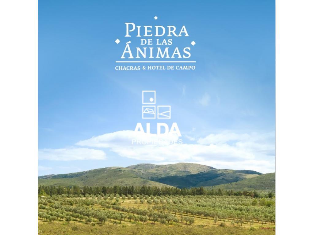 Chacra en Sierra de la Animas