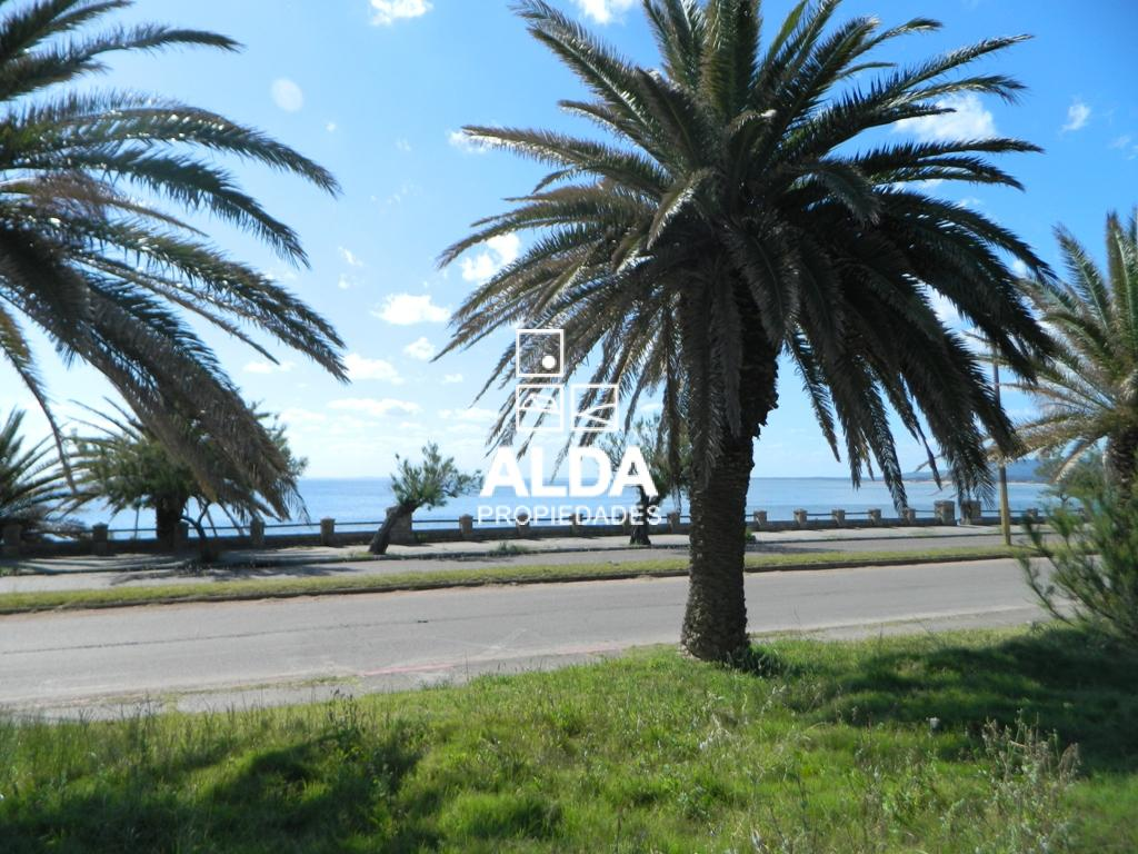 Terreno en Punta Fria