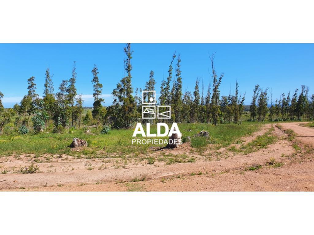 Terreno en Punta Colorada